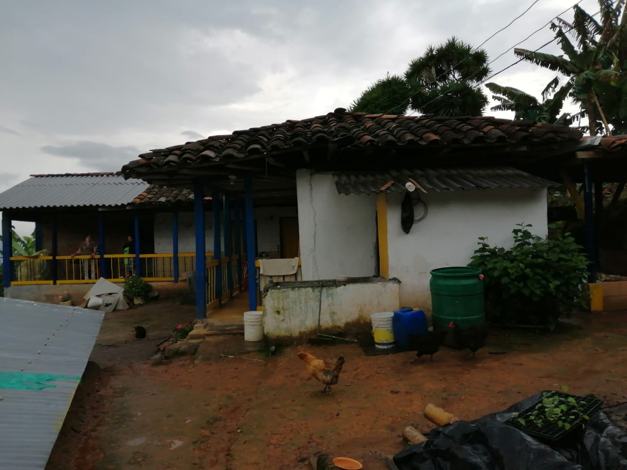 FVOC-0127 Se vende finca en Anserma, Caldas.