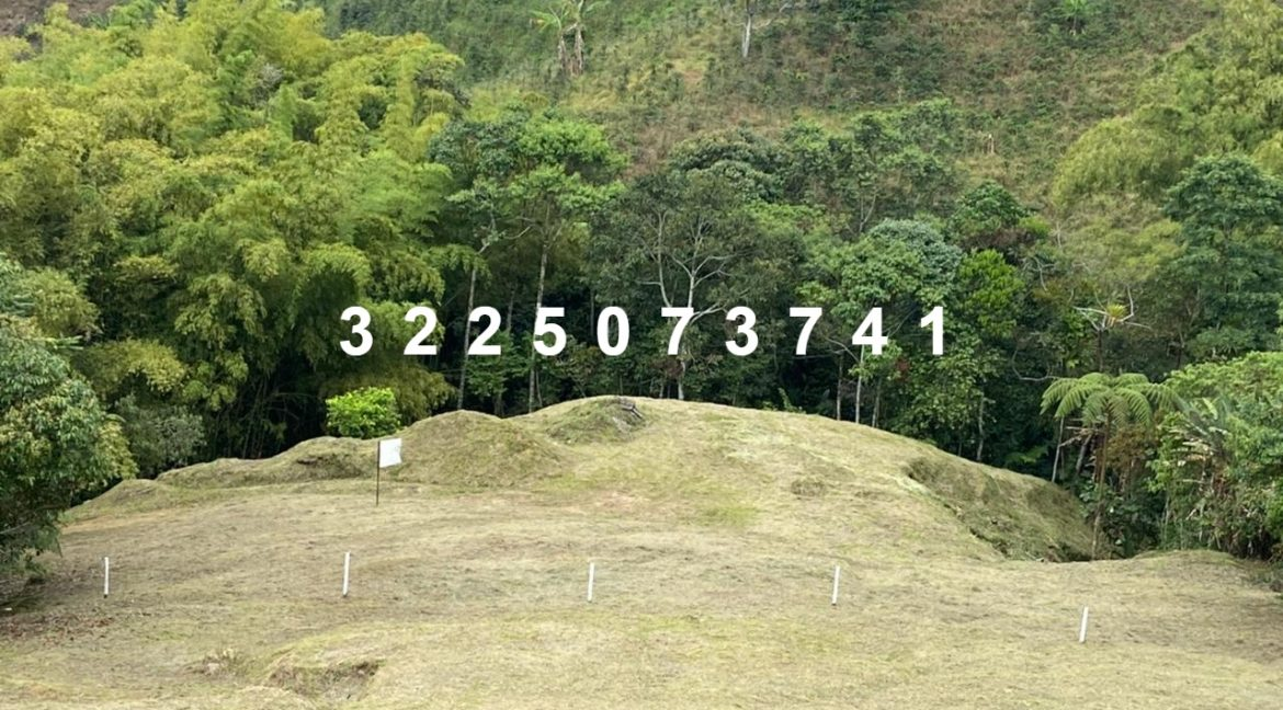 PV-0050-1 LOTE 10