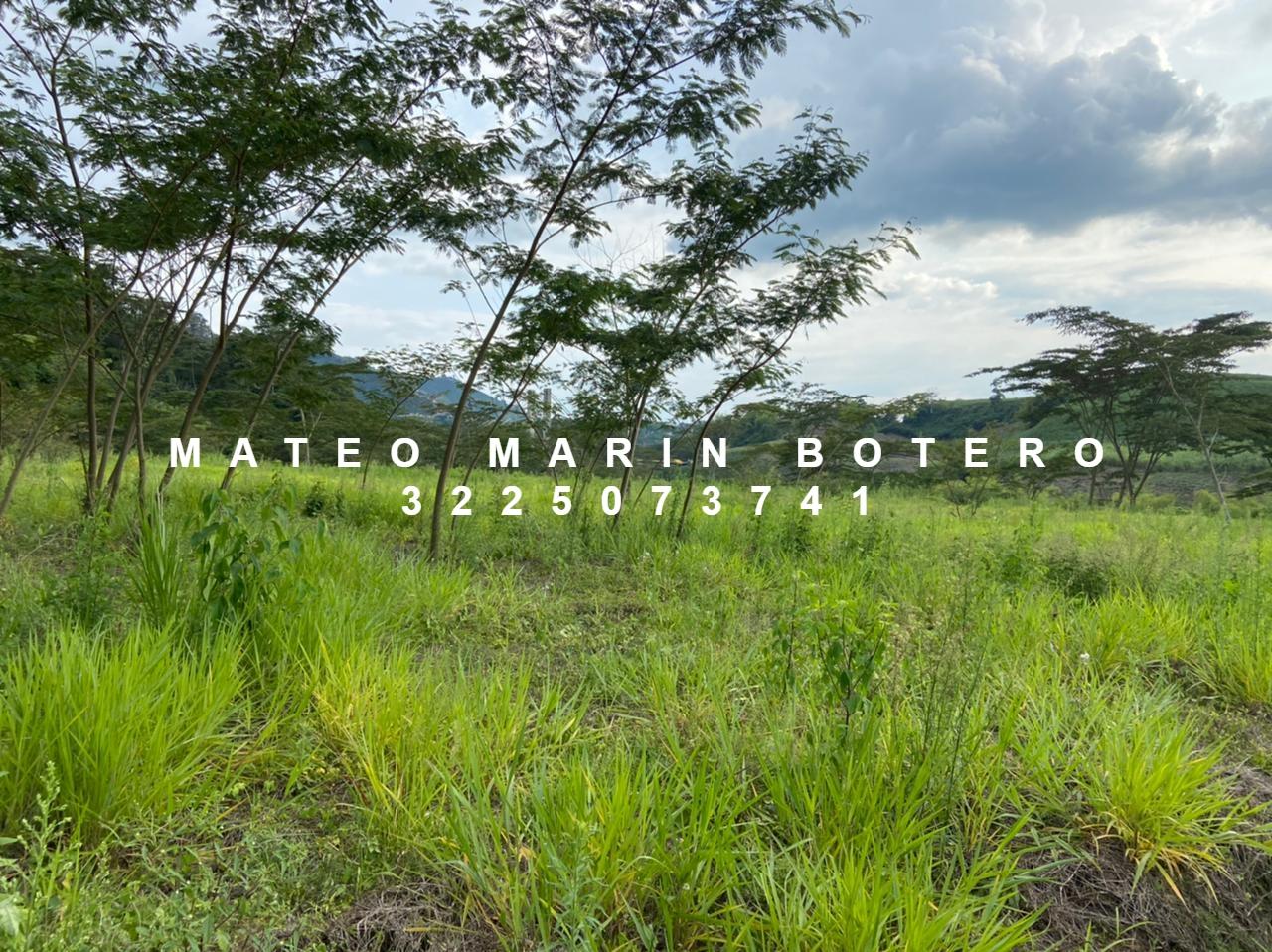 LVOC-0148 Se vende lote en Manizales, sobre vía principal.